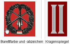 heeresfla_abzeichen_u_spiegel_11.11.jpg